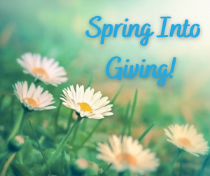 Now that the weather feels more like spring….spring into giving! In the days, weeks, and months ahead, we will continue to need you, our generous local supporters. If your circumstances allow and you would like to support us, please consider donating by visiting fpscny.org/donate. We hope you will join us in working together towards a brighter future ahead.